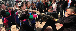 贵州抢鸡婚俗:谁抢到鸡姑娘跟谁走